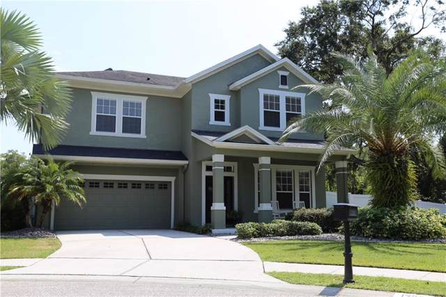 13303 Tiger Lilly Lane, Tampa, FL 33625 (MLS #T3199831) :: Team Bohannon Keller Williams, Tampa Properties
