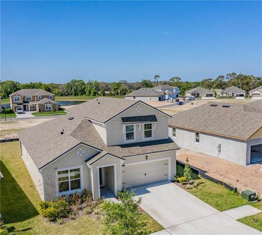 11507 Blue Woods Drive, Riverview, FL 33569 (MLS #T3232747) :: Griffin Group