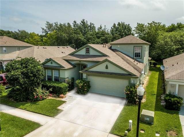 2606 Rosehaven Drive, Wesley Chapel, FL 33544 (MLS #T3238898) :: Rabell Realty Group