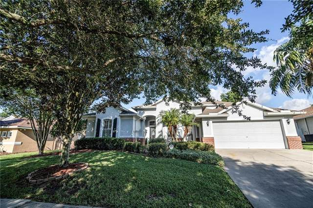 2818 Rolling Acres Place, Valrico, FL 33596 (MLS #T3243164) :: Medway Realty