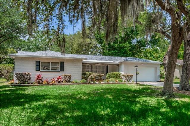 12926 N Rome Avenue, Tampa, FL 33612 (MLS #T3300753) :: Bustamante Real Estate