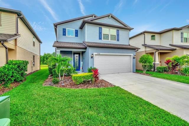 7751 Yale Harbor Drive, Wesley Chapel, FL 33545 (MLS #T3302207) :: Premier Home Experts