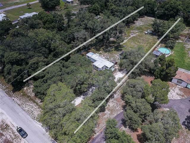 12208 Glenhill Drive, Riverview, FL 33569 (MLS #T3306277) :: Frankenstein Home Team