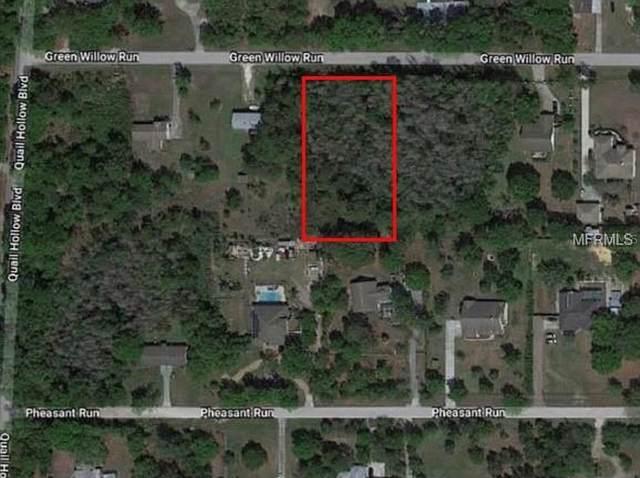 2623X Green Willow Run, Wesley Chapel, FL 33544 (MLS #T3312008) :: Premium Properties Real Estate Services