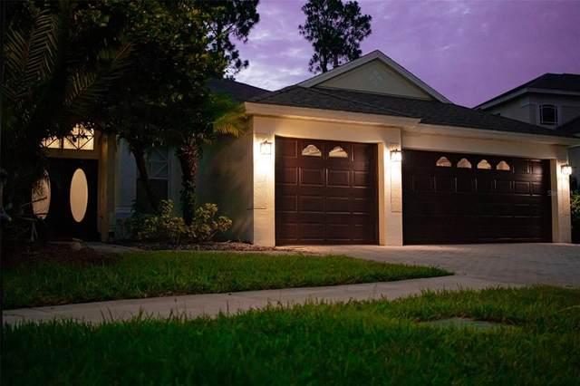 10413 Canary Isle Drive, Tampa, FL 33647 (MLS #T3312522) :: Team Bohannon