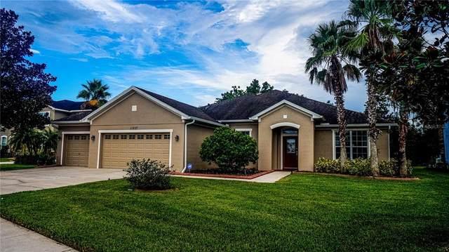 11807 Newberry Grove Loop, Riverview, FL 33579 (MLS #T3326288) :: Everlane Realty
