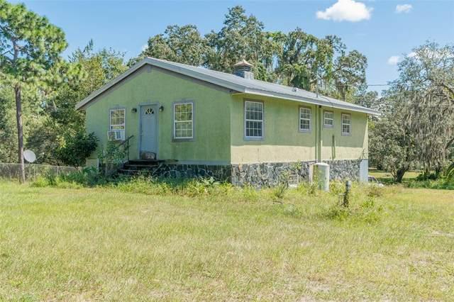 12538 Choctaw Trail, Hudson, FL 34669 (MLS #T3334054) :: Griffin Group