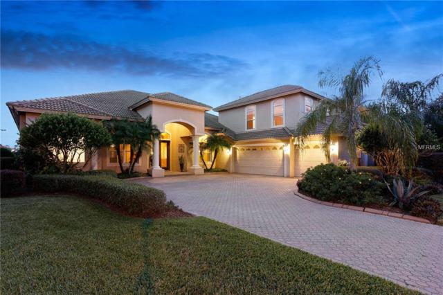 10513 Bermuda Isle Drive, Tampa, FL 33647 (MLS #U7837498) :: Team Bohannon Keller Williams, Tampa Properties