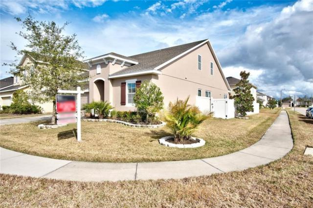 7600 Atwood Drive, Wesley Chapel, FL 33545 (MLS #U7843461) :: The Lockhart Team