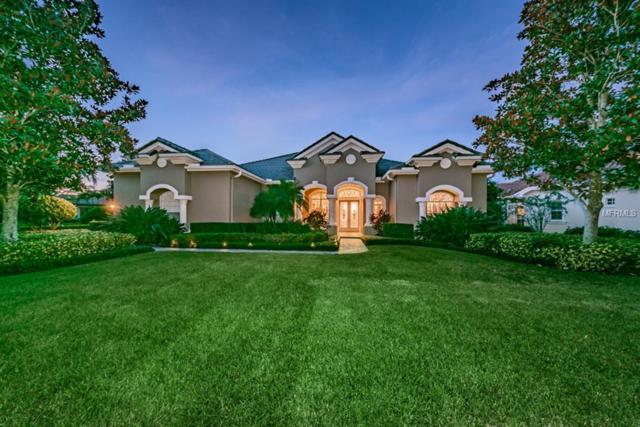3775 Douglas Place, Palm Harbor, FL 34683 (MLS #U7851784) :: Medway Realty