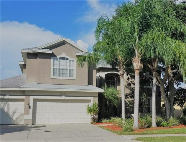 4651 Ayron Terrace, Palm Harbor, FL 34685 (MLS #U8015330) :: Revolution Real Estate