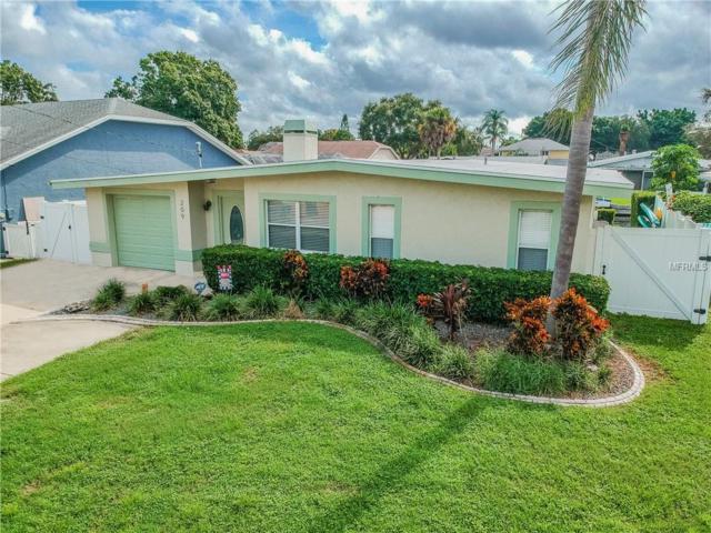 209 W Canal Drive, Palm Harbor, FL 34684 (MLS #U8016444) :: Paolini Properties Group