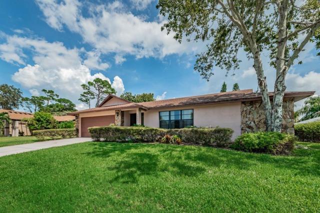 1362 Riverside Drive, Tarpon Springs, FL 34689 (MLS #U8017600) :: RE/MAX CHAMPIONS