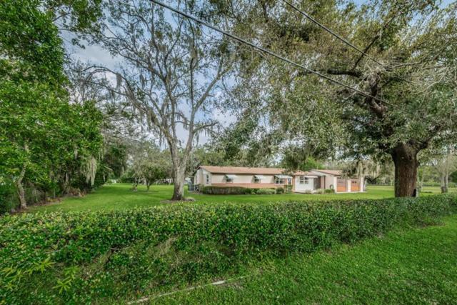 13102 Gibson Lane, Odessa, FL 33556 (MLS #U8018960) :: Homepride Realty Services