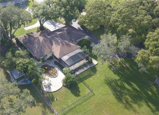 5614 Puritan Road, Tampa, FL 33617 (MLS #U8023086) :: Baird Realty Group