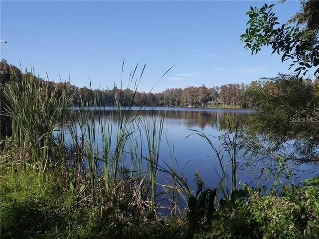 4642 School Road, Land O Lakes, FL 34638 (MLS #U8036510) :: Premier Home Experts