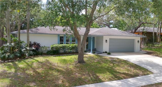 813 Highview Drive, Palm Harbor, FL 34683 (MLS #U8039719) :: Delgado Home Team at Keller Williams