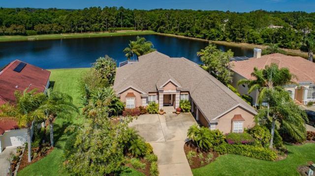4528 Rutledge Drive, Palm Harbor, FL 34685 (MLS #U8040736) :: Delgado Home Team at Keller Williams
