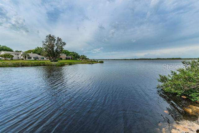 1589 Mary Lane, Tarpon Springs, FL 34689 (MLS #U8041251) :: Mark and Joni Coulter | Better Homes and Gardens