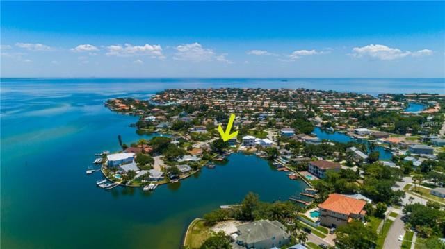 1919 Arrowhead Drive NE, St Petersburg, FL 33703 (MLS #U8045012) :: Lockhart & Walseth Team, Realtors