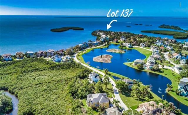 2015 Harbour Watch Circle, Tarpon Springs, FL 34689 (MLS #U8049132) :: The Duncan Duo Team