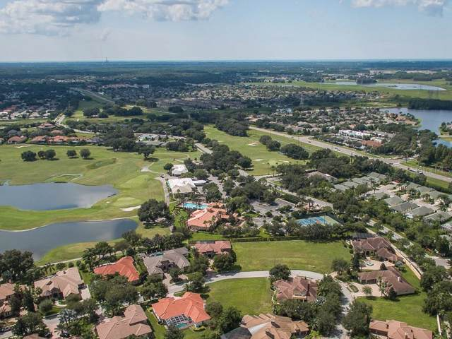 1323 Toscano Drive, Trinity, FL 34655 (MLS #U8055160) :: Griffin Group