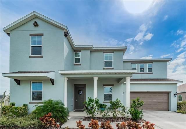 3238 Mela Court, Holiday, FL 34691 (MLS #U8062510) :: Griffin Group