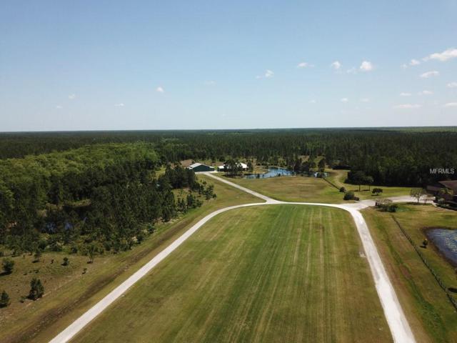 3120 Lafayette Landing Drive, De Leon Springs, FL 32130 (MLS #V4722129) :: Griffin Group