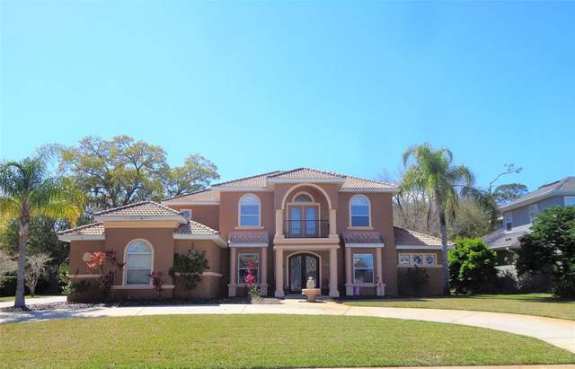 18 Minnow Drive, Ormond Beach, FL 32174 (MLS #V4918034) :: Florida Life Real Estate Group
