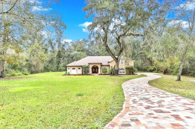 27057 Redfox Drive, Brooksville, FL 34602 (MLS #W7635912) :: Mark and Joni Coulter | Better Homes and Gardens
