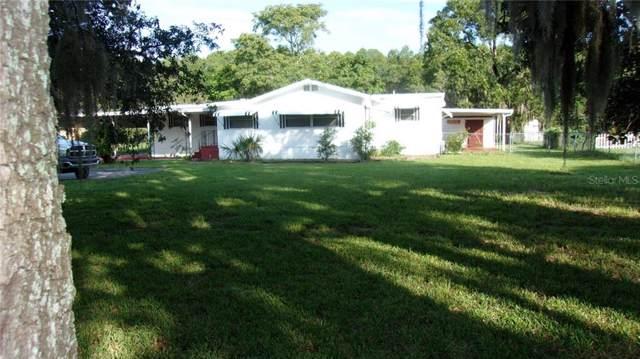 11721 Bruin Drive, New Port Richey, FL 34654 (MLS #W7815202) :: Bustamante Real Estate