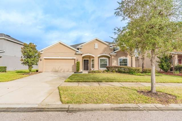 11235 Coventry Grove Circle, Lithia, FL 33547 (MLS #W7819358) :: Premier Home Experts
