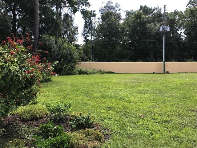 Mazo Manor, Lutz, FL 33558 (MLS #W7825988) :: Alpha Equity Team