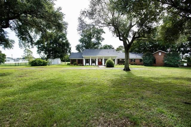 6520 Kitty Fox Lane, Lakeland, FL 33813 (MLS #L4925018) :: The Hustle and Heart Group
