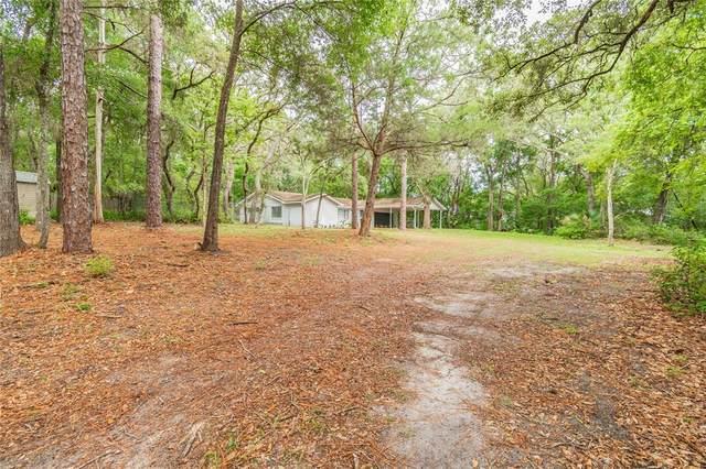 996 & 1000 S Orange Blossom Trail, Apopka, FL 32703 (MLS #O5944206) :: Zarghami Group