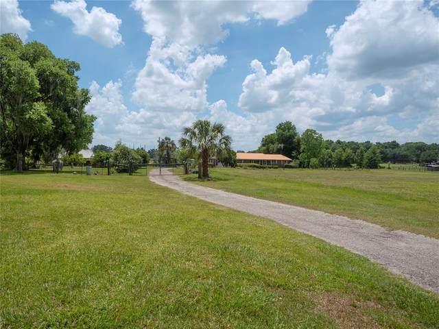 4850 NW 152ND Lane, Reddick, FL 32686 (MLS #OM618845) :: Everlane Realty