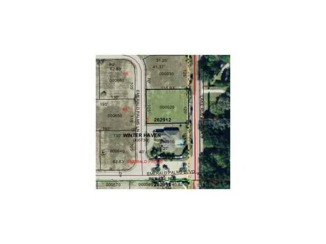 Emerald Palms Ln, Winter Haven, FL 33884 (MLS #P4623155) :: The Duncan Duo Team