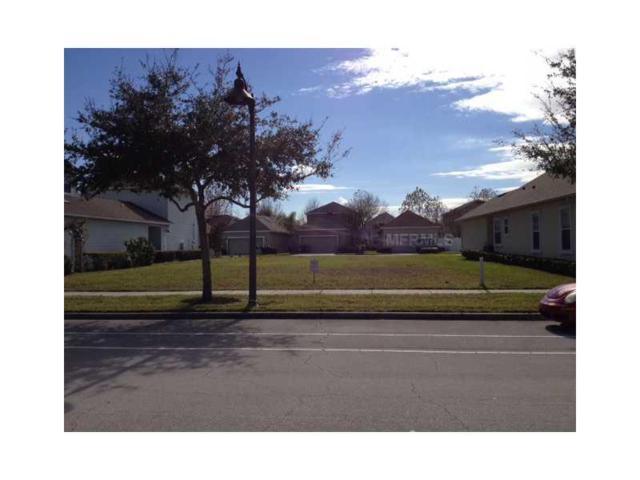 3335 Schoolhouse Road, Harmony, FL 34773 (MLS #S4722321) :: The Duncan Duo Team