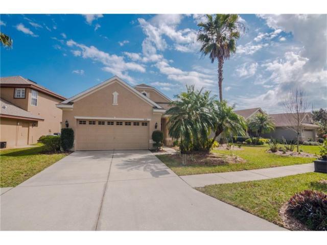 9615 Gretna Green Drive, Tampa, FL 33626 (MLS #T2878327) :: The Duncan Duo & Associates