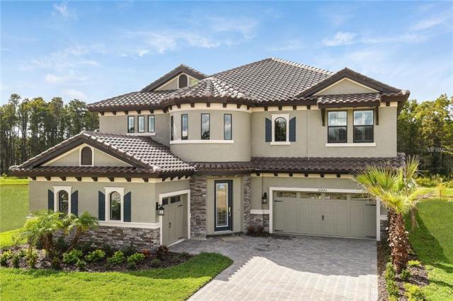 21842 Pristine Lake Boulevard, Land O Lakes, FL 34637 (MLS #T3106229) :: Revolution Real Estate