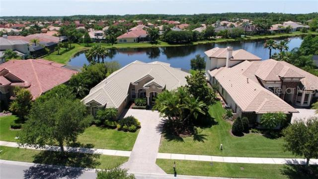 11818 Shire Wycliffe Court, Tampa, FL 33626 (MLS #T3171252) :: Andrew Cherry & Company