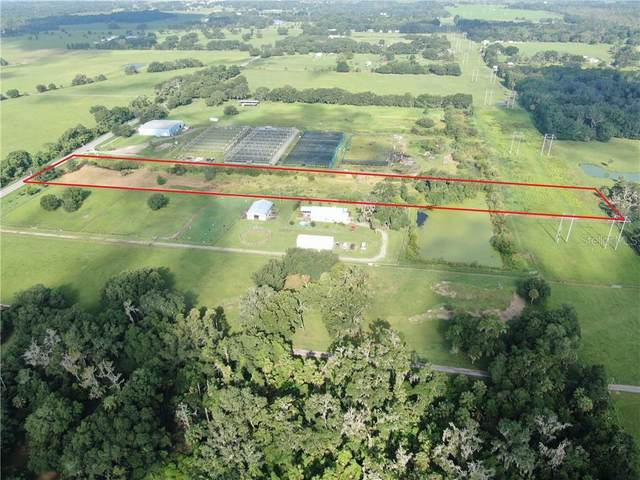 9205 Lithia Pinecrest Road, Lithia, FL 33547 (MLS #T3185750) :: Griffin Group