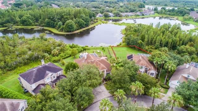10102 Evergreen Hill Drive, Tampa, FL 33647 (MLS #T3186060) :: Team Bohannon Keller Williams, Tampa Properties
