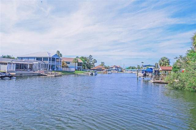 4491 Flounder Drive, Hernando Beach, FL 34607 (MLS #T3298780) :: Premium Properties Real Estate Services