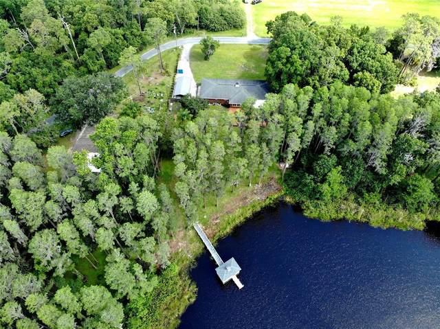 6174 Drexel Road, Land O Lakes, FL 34638 (MLS #T3304202) :: Vacasa Real Estate