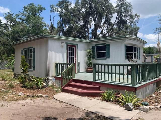 12208 Glenhill Drive, Riverview, FL 33569 (MLS #T3306277) :: Team Bohannon