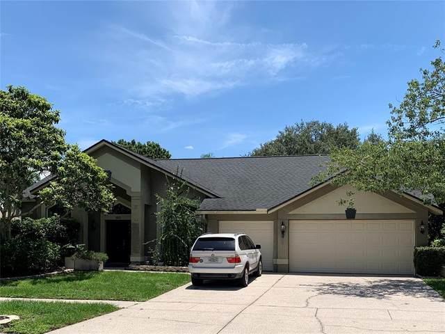15113 Laurel Cove Circle, Odessa, FL 33556 (MLS #T3314481) :: Zarghami Group