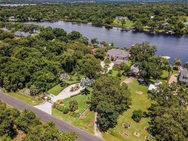 10212 Elbow Bend Road, Riverview, FL 33578 (MLS #T3319250) :: Vacasa Real Estate