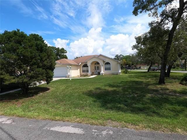 3428 Tomahawk Avenue, Spring Hill, FL 34606 (MLS #T3326843) :: Keller Williams Realty Select