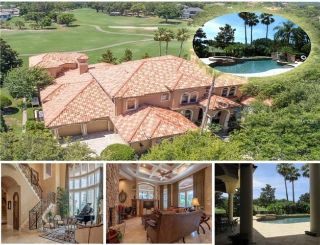 1214 Playmoor Drive, Palm Harbor, FL 34683 (MLS #U8008794) :: Medway Realty